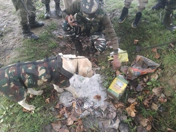 IED detected by CRPF in a culvert near Nutnussa, Kupwara early morning yesterday, was diffused by a Bomb Disposal squad