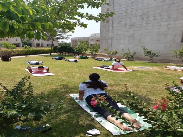 Indians practising yoga in Pakistan on International Yoga Day on Sunday. (Photo credit: official twitter)