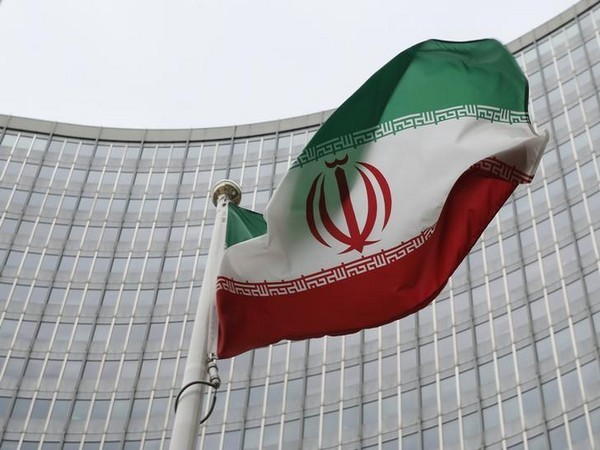 Flag of Iran (representative image)