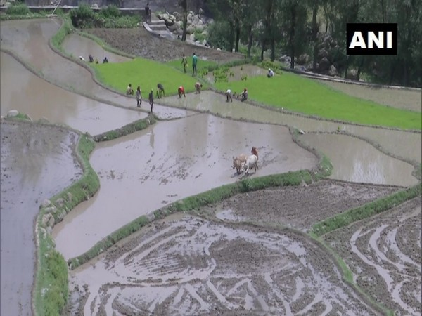 Deserted lands in far-flung areas of J-K's Rajouri receives water supply for irrigation. (Photo/ANI)