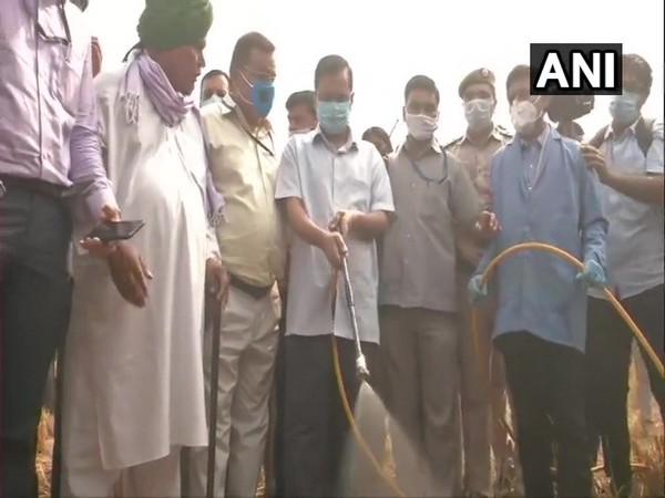 Delhi Chief Minister Arvind Kejriwal sprinkling the bio-decomposer solution in a field on Tuesday. (Photo/ANI)