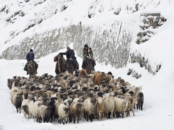 Kazakh herders' of Xinjiang (Photo Credit - Reuters)