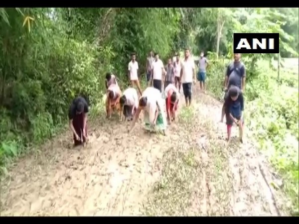 Locals sowing paddy on a road in bad condition in Assam's Dibrugarh (Photo/ANI)