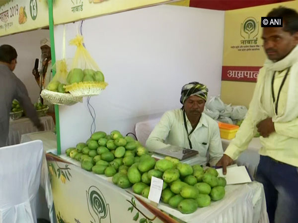 Bhopal Mango Festival