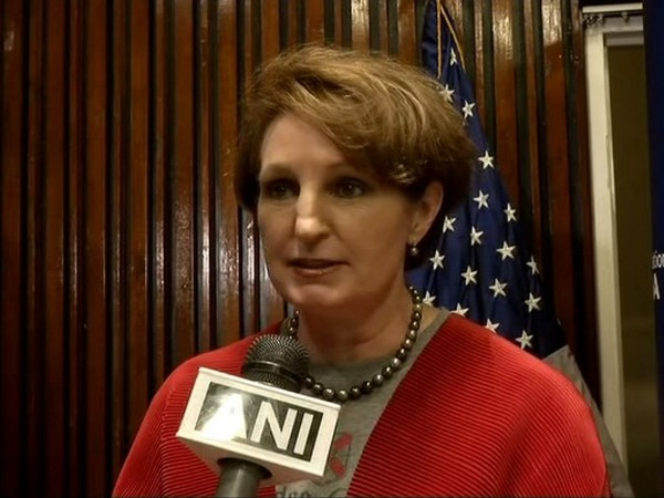 Charge d'Affaires MaryKay Carlson (File Image)