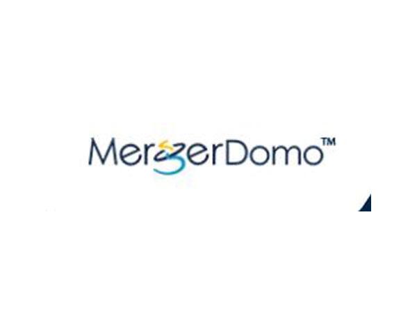 MergerDomo logo
