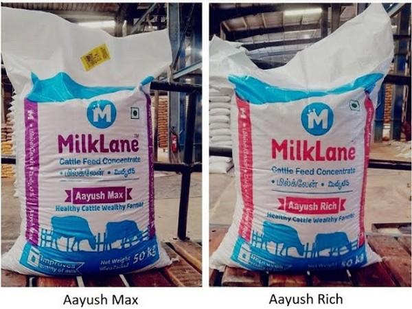 MilkLane - Aayush Max and Aayush Rich