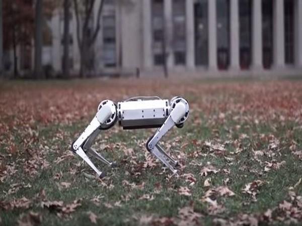 MIT's Mini Cheetah robot, Image courtesy: Youtube