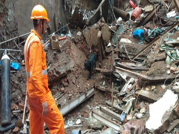 An NDRF worker along with a sniffer dog carrying a rescue and search operation in Mumbai's Dongri area on Wednesday.