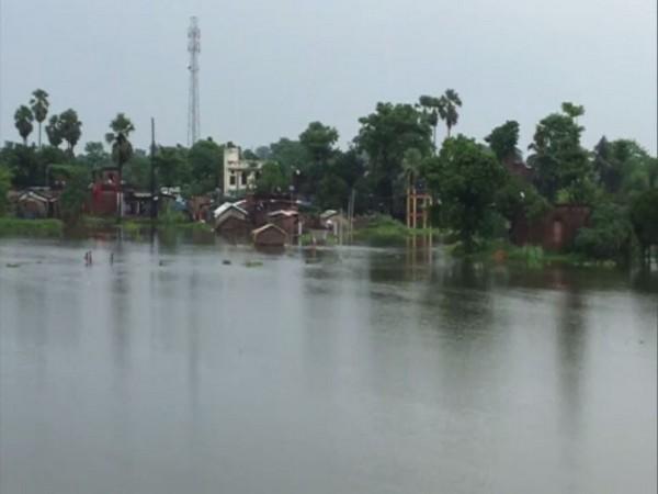 Visual from Muzaffarpur district, Bihar. (Photo/ANI)