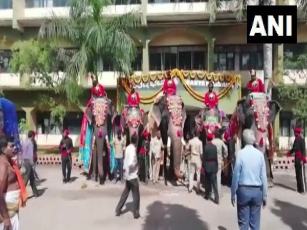 Elephants taking part in Dasara parade reached Mysuru Palace on Monday. Photo/ANI