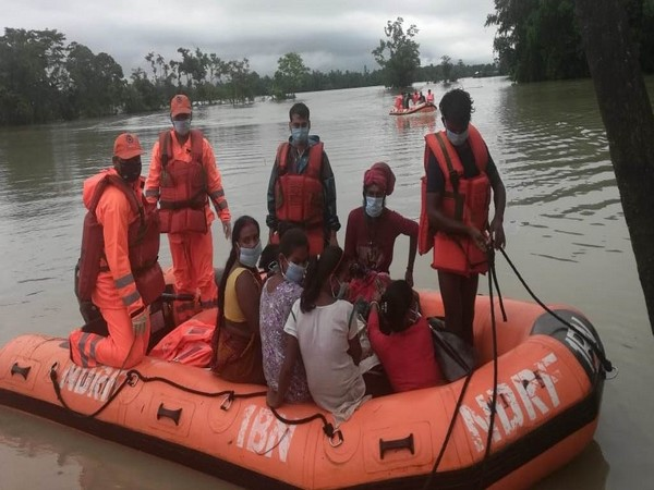 A NDRF team during rescue operation in flood-hit Assam (Photo/ANI)