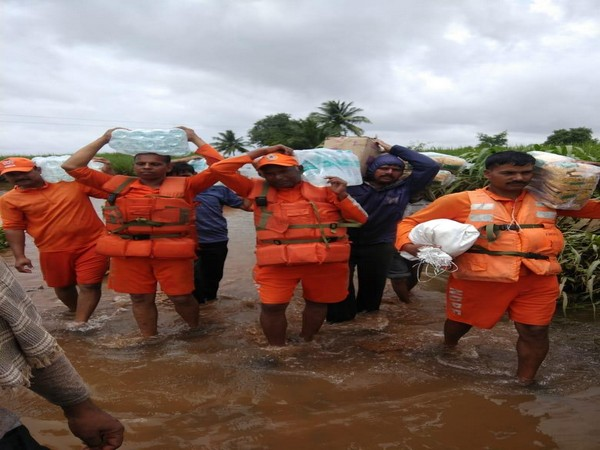 NDRF personnel carrying fodder for animal in Pune division on Tuesday. (Photo/ANI)