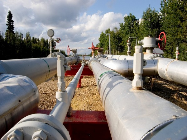The first-of-its-kind project will explore viability of decarbonising natural gas grid