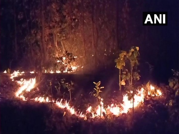 Fire continues to rage in Similipal National Park.