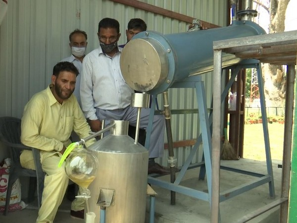 Workers extracting oil from flowers using in oil extraction plant in Srinagar. (Photo/ANI)