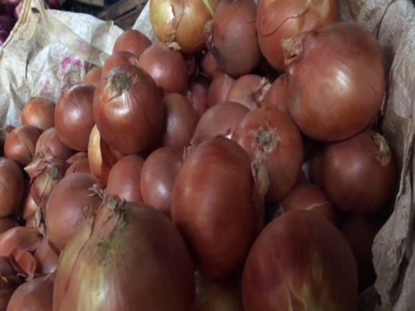 The imported onions weigh around 400-500 grams apiece. Photo/ANI