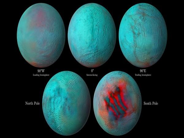 Images of Saturn's icy moon Enceladu. (Image Credit: NASA/JPL-Caltech/University of Arizona/LPG/CNRS/University of Nantes/Space Science Institute)