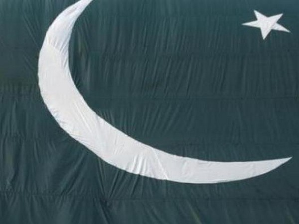 Flag of Pakistan (representative image)