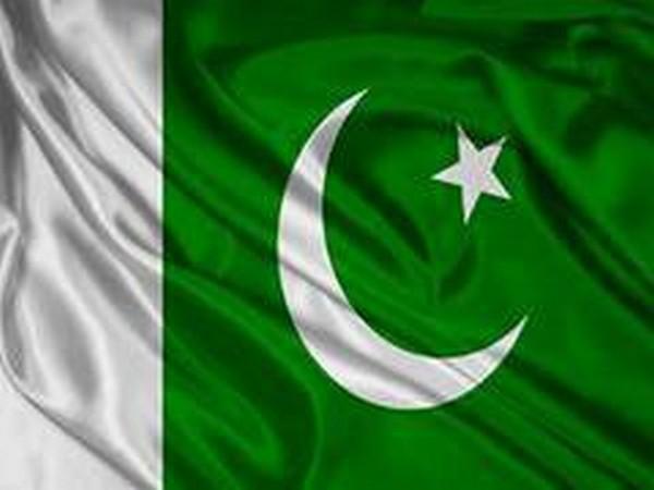 Pakistan flag (Representative image)