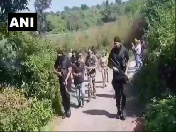 Search operation were conducted in jungles between Pathankot in Punjab and Nurpur in Himachal Pradesh after an alert from the security agencies. Photo/ANI