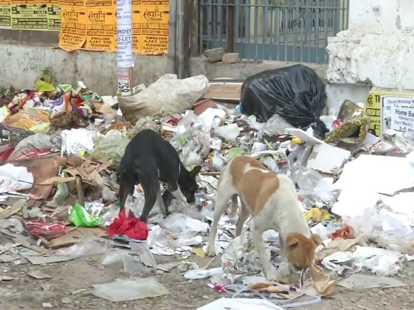 Garbage scattered on the roads of Patna. Photo/ANI