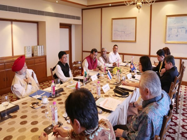 Piyush Goyal during a meeting with his Indonesian counterparts in New Delhi on Tuesday