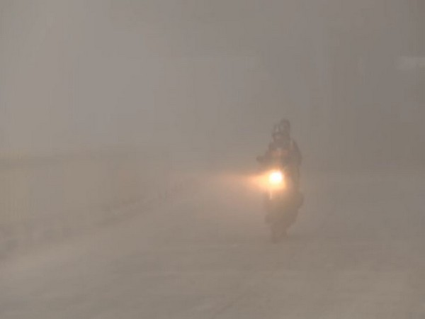 Low visibility due to smog near Signature Bridge in Delhi.