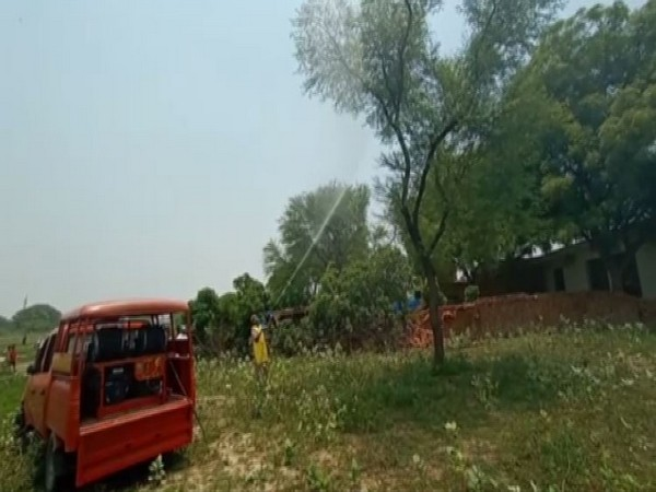 Chemicals being sprayed to kill locusts in Prayagraj. Photo/ANI