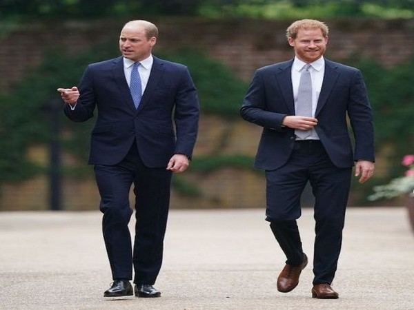 Prince William and Prince Harry (Image source: Instagram)