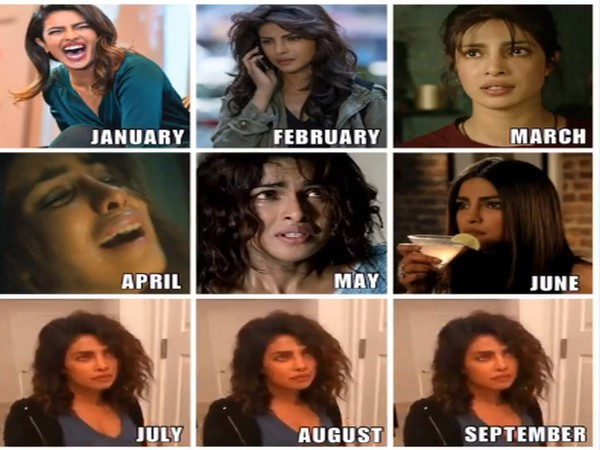 Actor Priyanka Chopra Jonas's sad meme (Image Source: Instagram)