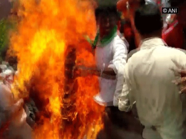 BJP workers burning the effigy during protest. Photo/ANI