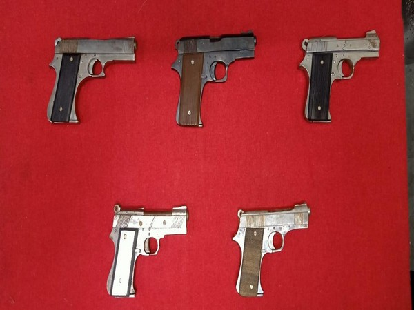 Country made pistols recovered from the accused