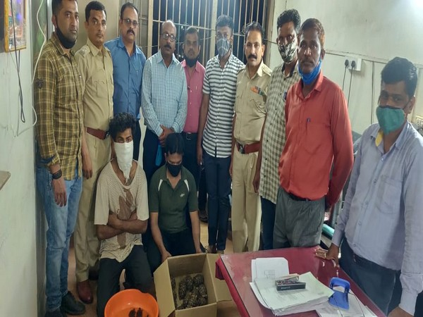 Forest department of Pune arrests two people involved in smuggling of tortoises and turtles (Photo ANI)