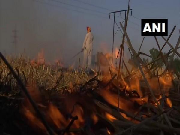 A visual of Punjab farmer in Chatiwind village burning the farm residue
