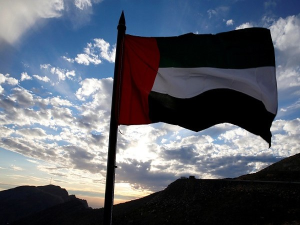 UAE flag (Credit: Reuters Pictures)