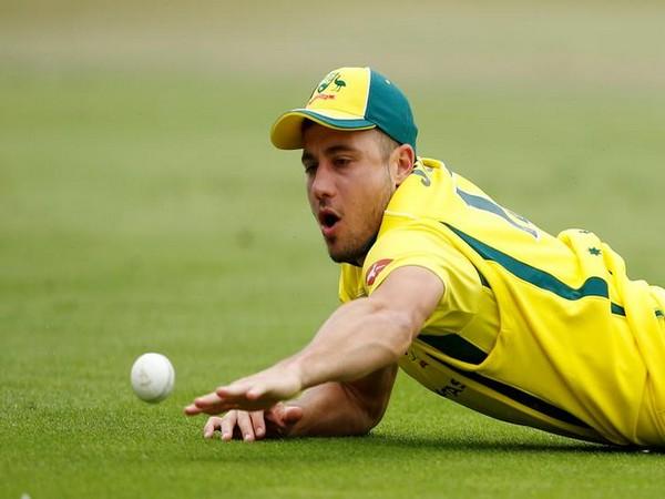 Australia's Marcus Stoinis