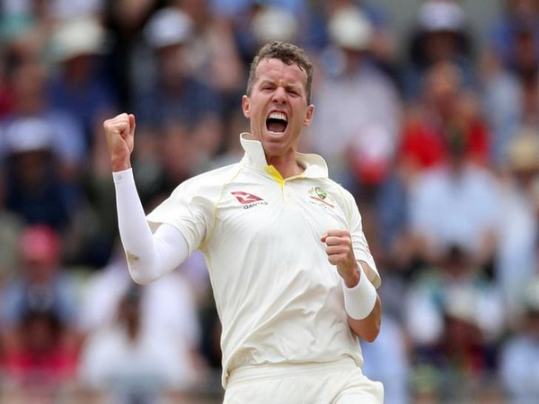 Australia bowler Peter Siddle
