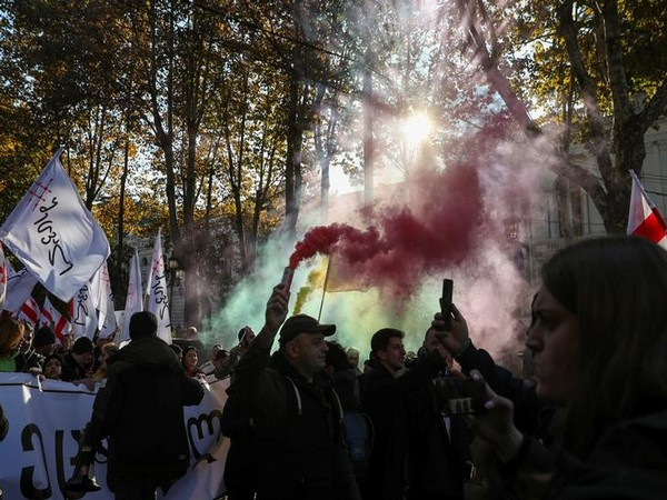 Opposition supporters take part in a rally to protest against the government and demand an early parliamentary election in Tbilisi, Georgia.