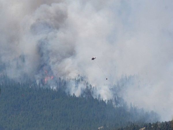 Wildfires raging in Lytton village of Canada's British Columbia (Credit: Reuters)