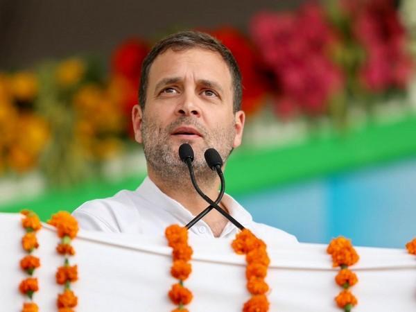 Congress president Rahul Gandhi (Photo/ANI)