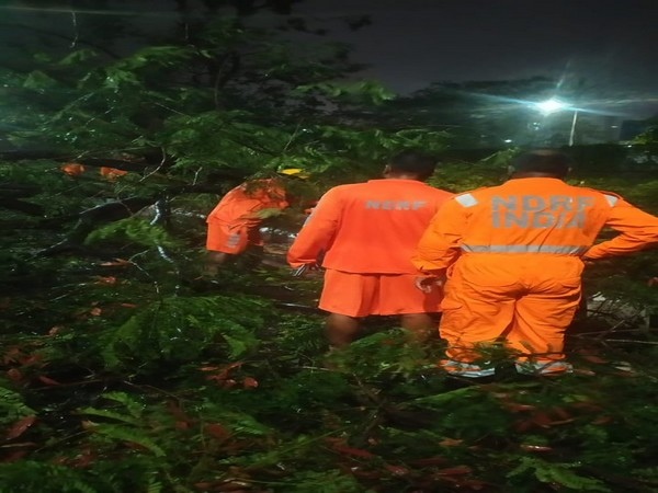 Restoration work by NDRF personnel underway at Airport Road in Kolkata in West Bengal