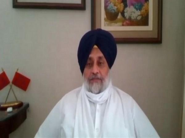 Shiromani Akali Dal (SAD) President Sukhbir Singh Badal. (File Photo)