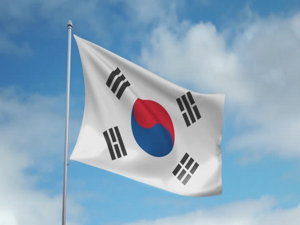 Flag of South Korea (representative image)