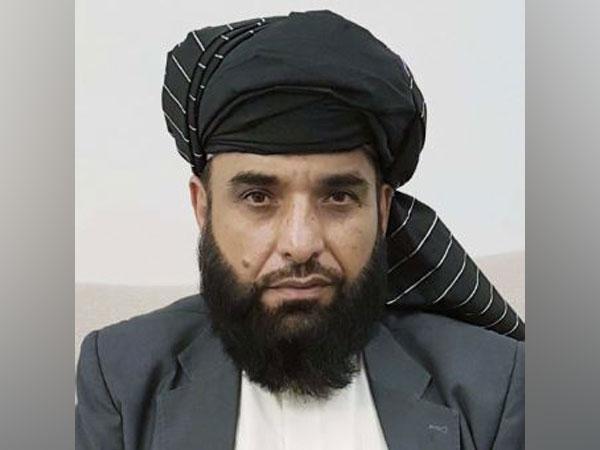 Taliban spokesperson Suhail Shaheen (Photo Credits: Suhail Shaheen's Twitter)
