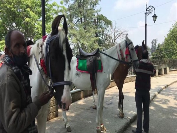 Visual of horsemen with their horses. (Photo/ANI)