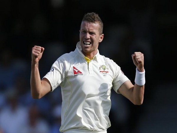 Australian fast bowler Peter Siddle (File photo)