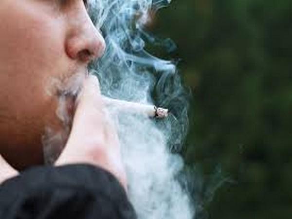 SUECIA VA A PROHIBIR FUMAR AL AIRE LIBRE Smoking_YzYJgWe_fLgbRrz