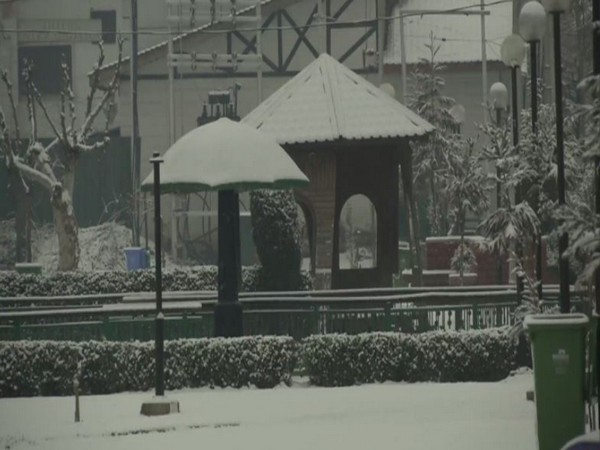 A view after fresh snowfall in Srinagar, Kashmir on Sunday.