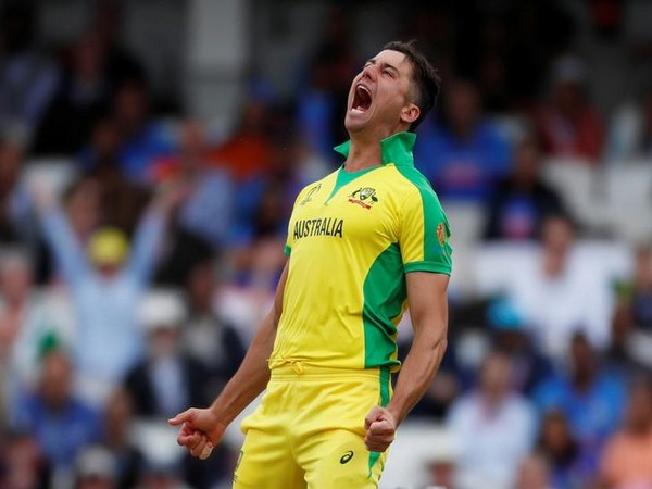 Australian all-rounder Marcus Stoinis celebrating after taking a wicket against India